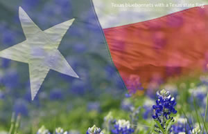 Where to buy Argentine Wines in Texas, Malbec, Ikal 1150, Picture of Texas Flag